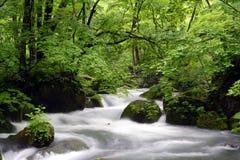 Fluss Japan-Aomori Oirase-gawa Stockfotografie