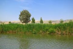 Fluss Jordan, Israel Stockbilder