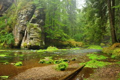 Fluss Kamenice Stockfotografie