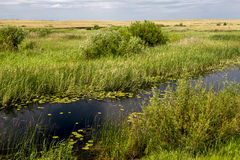 Fluss Karaganka Stockfoto