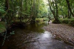 Fluss in Killarney Lizenzfreie Stockbilder