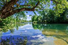 Fluss Kolpa Stockfotografie