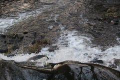 Fluss | Landschaft Stockbild
