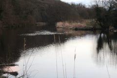 Fluss | Landschaft Stockbilder