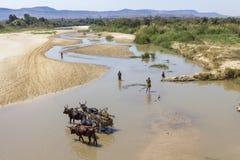 Fluss in Madagaskar, Afrika Lizenzfreies Stockbild