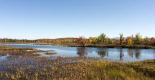 Fluss mit Bäumen und Feldern in den Fallfarben im Adirondacks Stockfotos