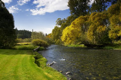 Fluss mit blauem Himmel und Bäumen Stockfotografie
