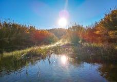 Fluss mit der Verdunstung auf einem sehr kalten Morgen stockbilder