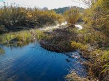 Fluss mit der Verdunstung auf einem sehr kalten Morgen lizenzfreie stockfotos