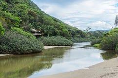 Fluss mit einem Brackwasser, das durch die Seite eines mountai überschreitet Lizenzfreies Stockfoto