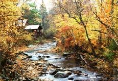 Fluss mit Fall-Bäumen und Kabine im Herbst Stockfotografie