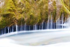 Fluss mit grünem Moos Lizenzfreies Stockbild