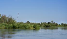 Fluss mit grünen Bäumen Lizenzfreie Stockbilder