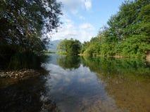 Fluss mit Kristallwasser in der Stadt Plav, Montenegro Stockfoto
