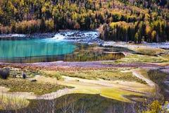 Fluss mit Wald stockfotos
