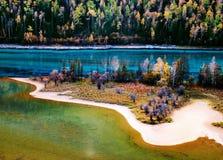 Fluss mit Wald stockfoto