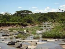 Fluss in Naboisho-Erhaltung, Kenia Lizenzfreie Stockfotografie