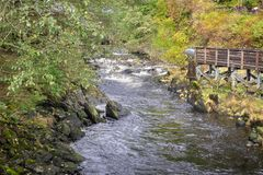 Fluss nahe Nebenfluss-Straße in Alaksa stockbilder