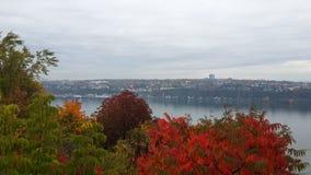 Fluss nahe Québec-Stadt, Herbstbäume bedeckt mit mehrfarbigem Laub lizenzfreies stockbild