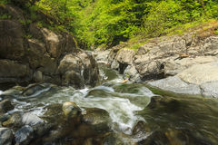 Fluss in Nationalpark Hirkan in Lankaran Aserbaidschan lizenzfreies stockbild