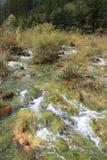 Fluss in Nationalpark Jiuzhaigou Stockbild