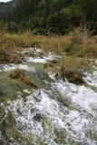 Fluss in Nationalpark Jiuzhaigou Lizenzfreie Stockfotos