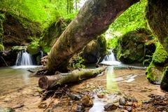 Fluss neben einem großen Flussstein Stockfoto