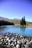 Fluss neben Wald lizenzfreie stockfotos