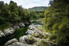 Fluss Neuseelands Pelorus Lizenzfreies Stockfoto