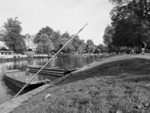 Fluss-Nocken, der in Cambridge in Schwarzweiss stochert stockbild