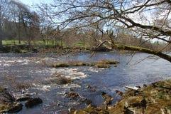 Fluss Nord-Tyne Stockbilder