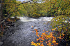 Fluss in Nord-Wales Stockbild