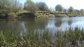 Fluss in Northumberland, Großbritannien stock footage