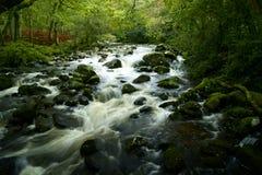 Fluss plym auf dartmoor Nationalpark Devon Lizenzfreie Stockfotos