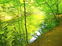 Fluss-Querneigungen Stockfotografie