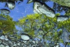 Fluss Relections Lizenzfreie Stockbilder