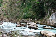 Fluss Roia, Alpen, Frankreich Lizenzfreie Stockbilder