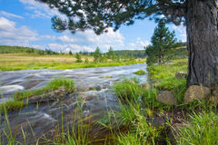 Fluss Rzav 1 Lizenzfreie Stockfotos
