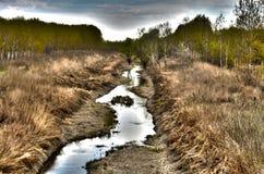 Fluss Sánc (Tószeg, Ungarn) Stockfotografie