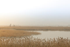 Fluss Slough Lizenzfreie Stockfotografie
