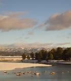 Fluss Snowy Payette lizenzfreie stockfotografie