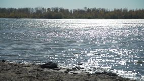 Fluss am sonnigen Herbsttag stock footage
