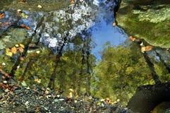 Fluss-Spiegel Stockbild