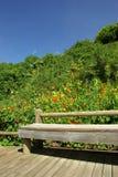 Fluss-Stein-Gärten Lizenzfreies Stockbild