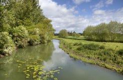 Fluss Stour, Warwickshire Stockfotografie