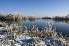 Fluss Suir im Winter Stockbild