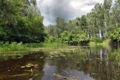 Fluss Sula-Sommertag Lizenzfreie Stockbilder