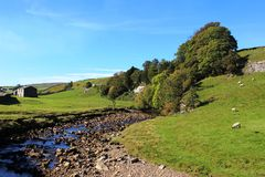 Fluss Swale, Swaledale, North Yorkshire Stockbilder