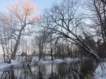 Fluss Sysa im Winter, Litauen Lizenzfreie Stockfotos