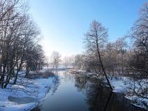 Fluss Sysa und Bäume im Winter, Litauen Lizenzfreie Stockfotos